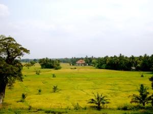 landowner & property