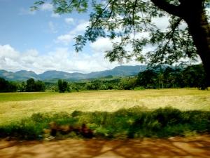 road near Dambulla