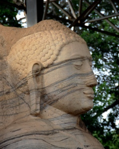 close up of standing Buddha at Gal Vihara