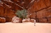 gorge, Wadi Rum