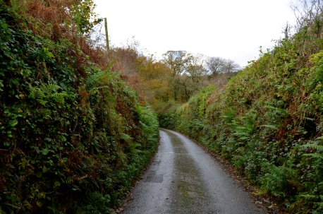 the road to Warleggan