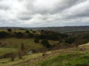 Box Hill